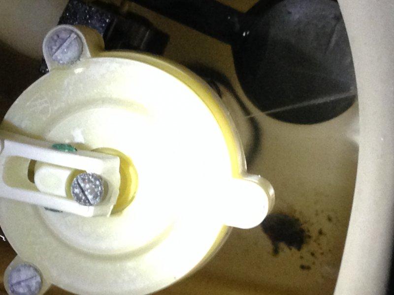 Kohler 3402 Rialto Toilet Replace Parts Or Use