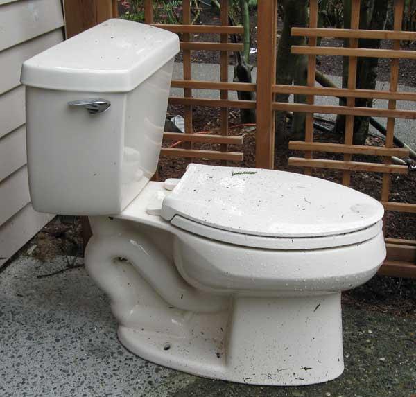 Kohlers Toilets : Feedback on Ingenium Flushing System (Kohler) Terry Love Plumbing ...